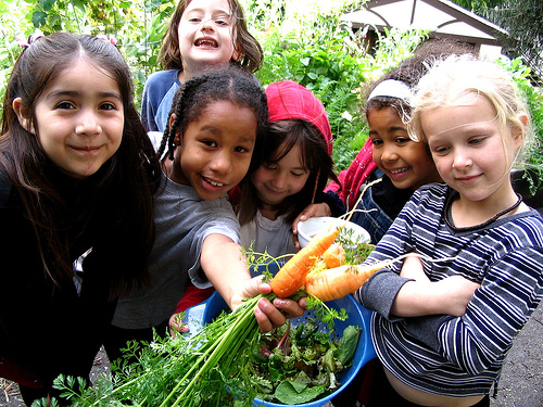 Mini huerto infantil, 6 beneficios para tus hijos