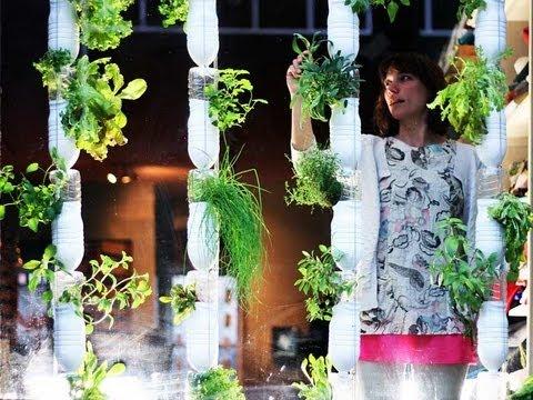 Un huerto en la ventana, window farming