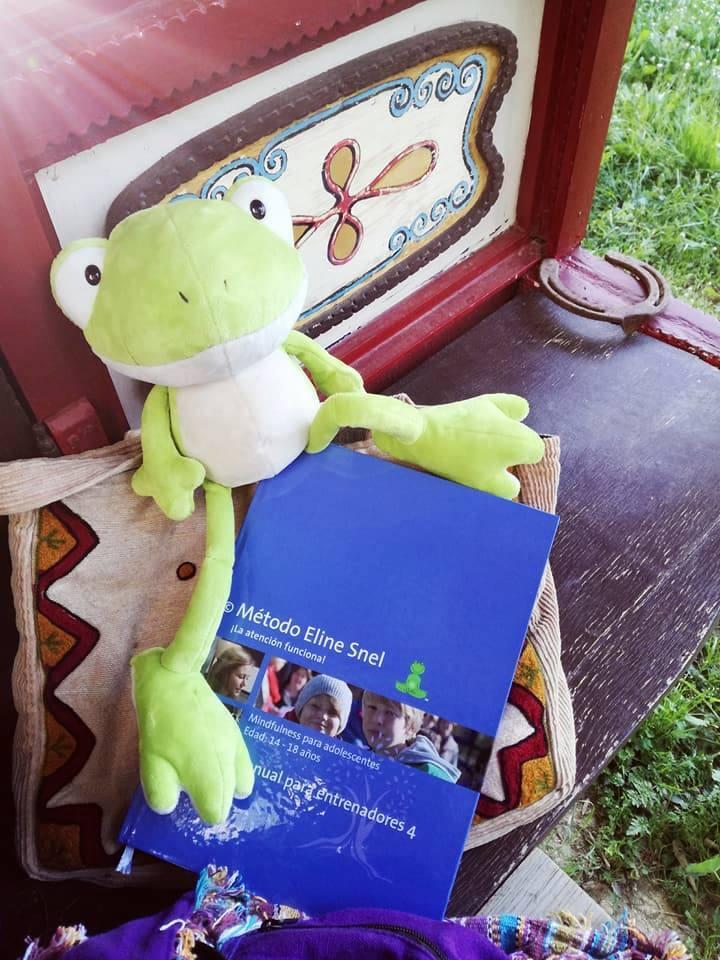 Formación Mindfulness para niños en España