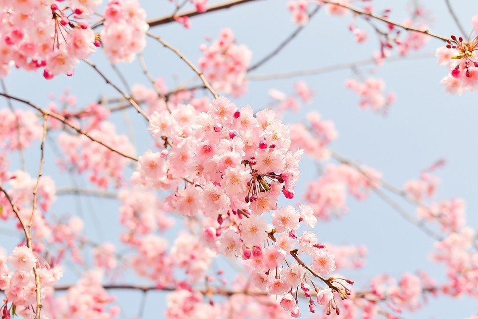 12 poesías para conectar con tu sabiduría interna